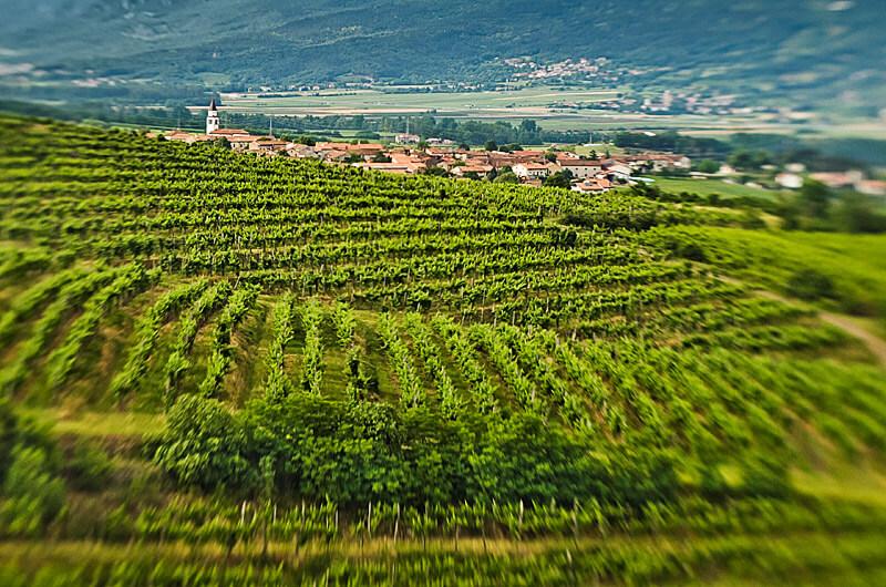 Posestvo Rouna, Vipavska dolina, Slovenija